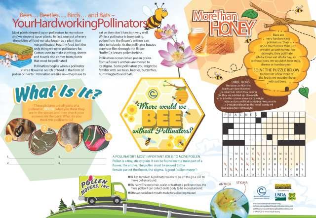 Pollinators_Placemat_no_bleeds_Page_1
