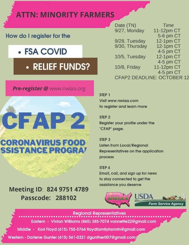 CFAP2 MINORITY